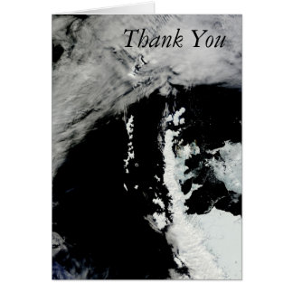 Spring on the Antarctic Peninsula Thank You Note Card