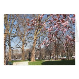 Spring on the Champs-Elysées Card