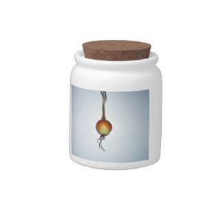 Spring Onion Candy Jar