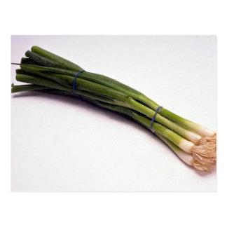 Spring onions postcard