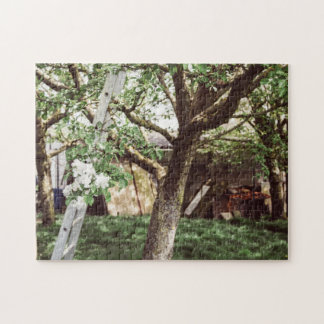 Spring Orchard With Ladder Against Tree Jigsaw Puzzle