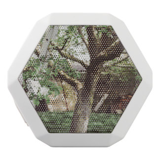 Spring Orchard With Ladder Against Tree White Bluetooth Speaker