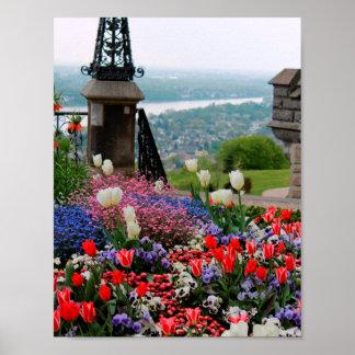 Spring over the Rhein Poster