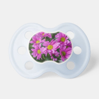 Spring Pacifier