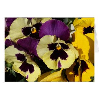 Spring Pansies Card