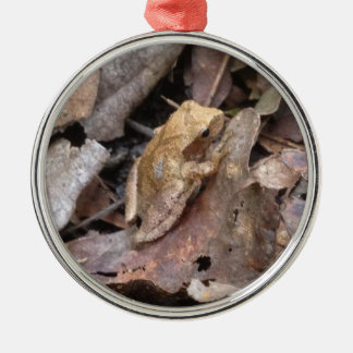 Spring Peeper Metal Ornament