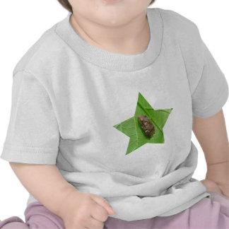 Spring Peeper (Pseudacris crucifer) Treefrog Items Tshirts