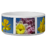 Spring Pet Bowls Daffodils Spring Blue Sky Dogs