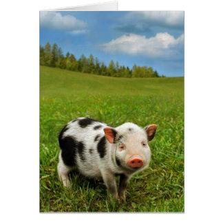Spring piglet card