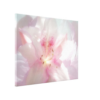 Spring Pink Azalea Photo Wrapped Canvas Print