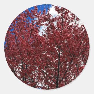 Spring Pink Classic Round Sticker
