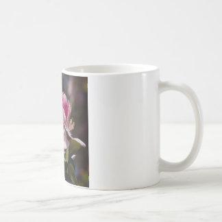 Spring Pink Flowering Crabapple Blossoms Coffee Mug