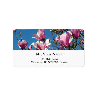 spring pink magnolia flowers in blue sky label