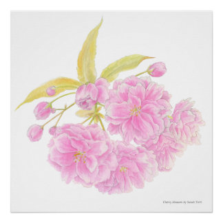 Spring pink tree blossom watercolor art poster