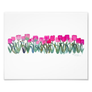 Spring Pink Tulips 8 x 10 Photographic Print