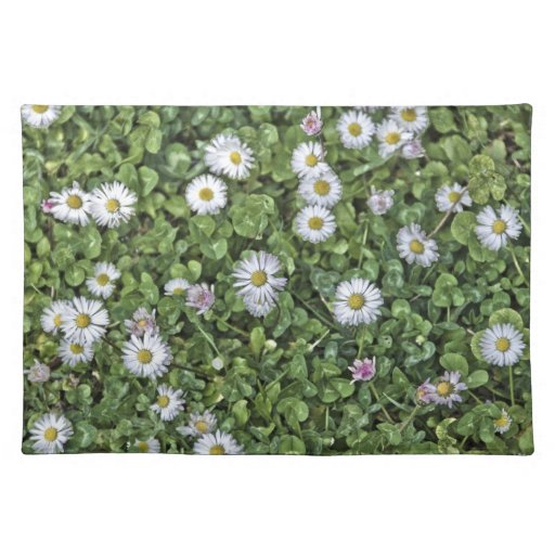 spring placemat with daisies cloth place mat