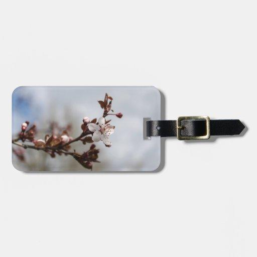 spring plum blossom luggage tag