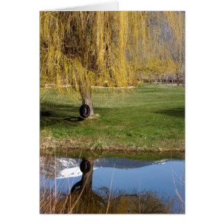Spring Pond Comfort Card