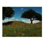 Spring Poppy Fields Postcard