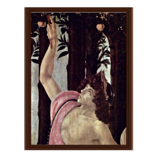 Spring (Primavera),  By Botticelli Sandro Postcard