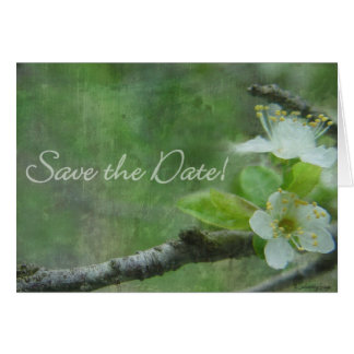 spring promise save the date card