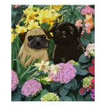 Spring Pugs Poster by Amy Cappelli