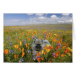 Spring Puppy Notecard Stationery Note Card