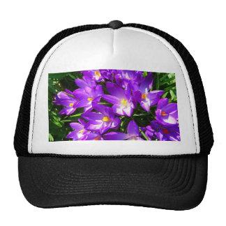 Spring Purple Crocus Flower Hat