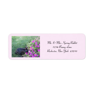 Spring Rabbit Custom Return Address Label
