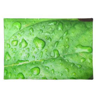 Spring Rain placemat