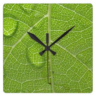 Spring Raindrops Clock