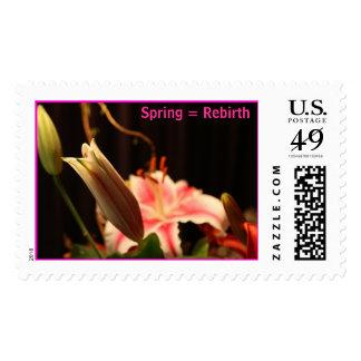 Spring = Rebirth Postage Stamp