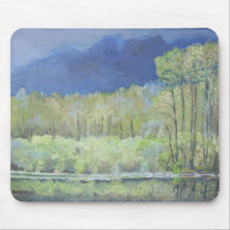 Spring reflections of Everglades Mouse Pads