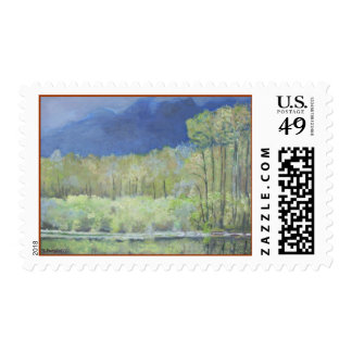 Spring reflections of Everglades Postage Stamp