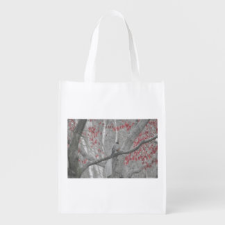 Spring Robin in the Old Red Maple Tree Grocery Bag