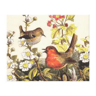 Spring Robins Bird Vintage Canvas Print