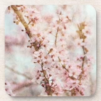 Spring Romance Cherry Blossoms Drink Coaster