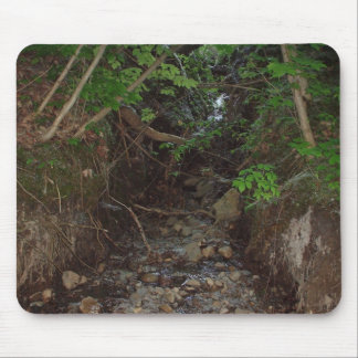 Spring Runoff Photo Mouse Pad