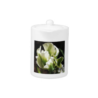 Spring Showers Tulip Garden Botanical Photography Teapot