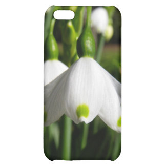 Spring Snowdrops iPhone 5C Covers