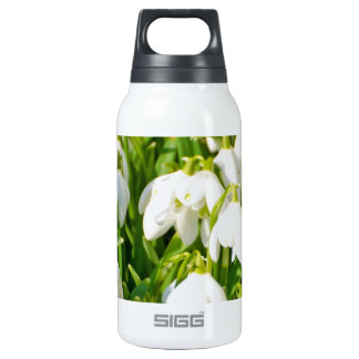 Spring Snowflake & Summer Snowflake or Loddon Lily 10 Oz Insulated SIGG Thermos Water Bottle