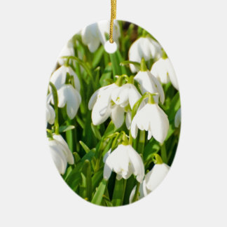 Spring Snowflake & Summer Snowflake or Loddon Lily Double-Sided Oval Ceramic Christmas Ornament
