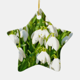 Spring Snowflake & Summer Snowflake or Loddon Lily Double-Sided Star Ceramic Christmas Ornament