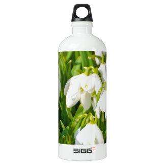 Spring Snowflake & Summer Snowflake or Loddon Lily SIGG Traveler 1.0L Water Bottle