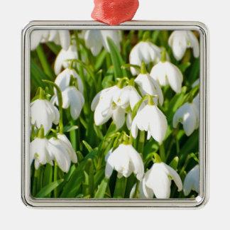 Spring Snowflake & Summer Snowflake or Loddon Lily Square Metal Christmas Ornament