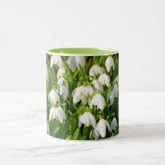 Spring Snowflake & Summer Snowflake or Loddon Lily Two-Tone Coffee Mug