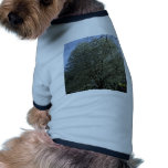 Spring sprung gift items pet tee