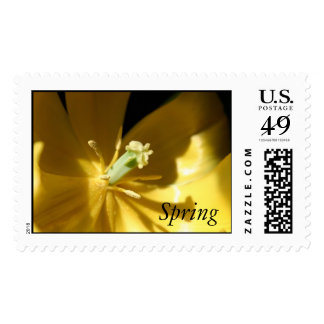 Spring Stamps