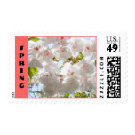 SPRING stamps White Sunlit Pink Tree Blossoms