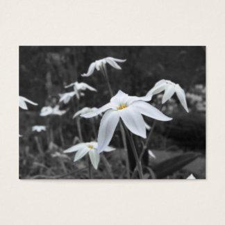 Spring Starflowers ATC Photo Card
